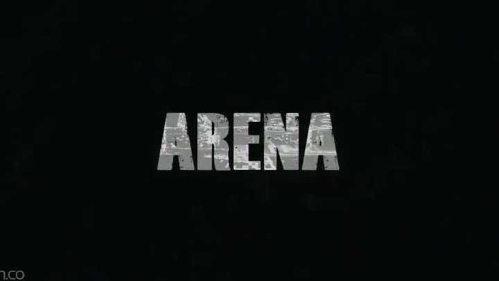 Arena 2011