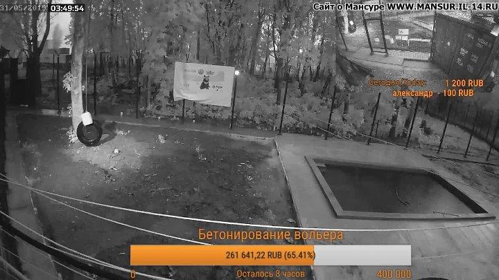 Прямая трансляция медведя Мансура в Одноклассники. Круглосуточная трансляция и все видео на канале Мансура https://www.youtube.com/mansurbear