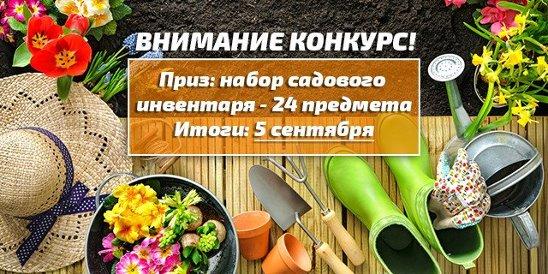9e1563903fc50 Порядок: сеть супермаркетов и интернет-магазин товаров для дома и дачи.